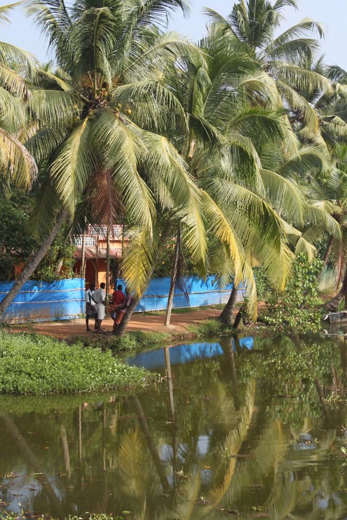 IMG_4016.JPG Kerala Indien bild 9
